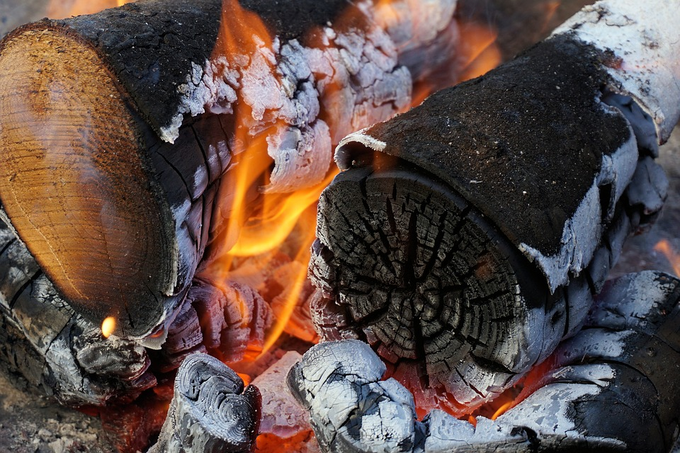 The role of wood fuels in Africa